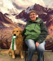 GCH Limelite Fly'n At The Speed of Sound - Golden Retriever - Best of Breed